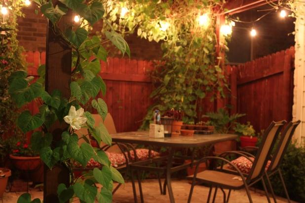 moonflower patio